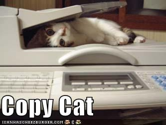 Copycat-cat-lying-on-a-copier