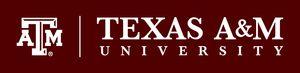 Texas a&m law
