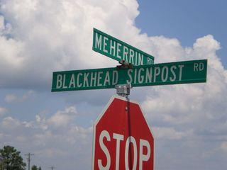 Blackhead_Signpost_Road_Brophy