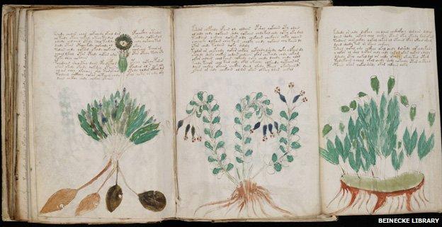 _68288322_new_voynich_manuscript_(170)