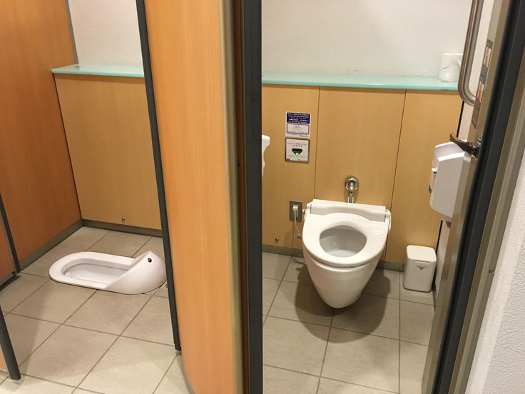 The Faculty Lounge: Comparative Toilets